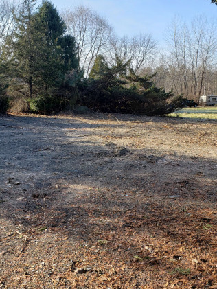 land clearing ravena, albany and bethlehem  ny